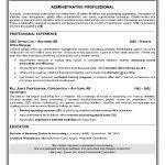 examples of resumes 81 amusing professional resume format job