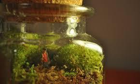 9 terrarium kits for kids a fun way to bring nature indoors