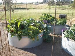 water trough gardening u2014 newfandhound