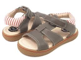 livie u0026 luca sailor gray barefoot shoe
