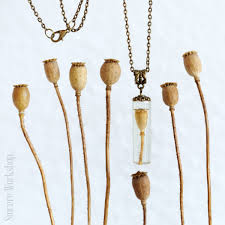 flower necklace etsy images New jewelry in my etsy store necklace with dried poppy pods jpg