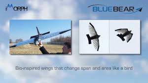 uav with wings that morph like a bird youtube