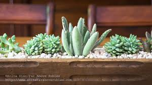 succulent planter far above rubies succulent planter box