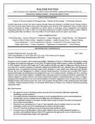 executive summary resume exles executive summary resume resume sles