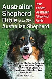 training a australian shepherd puppy australian shepherd dog training think like a dog but don u0027t eat