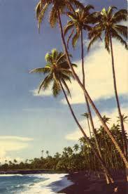 Where Is The Black Sand Beach Best 25 Waves On The Beach Ideas On Pinterest Beach Sunset