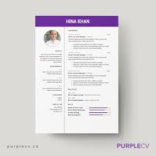 It Resume Examples Entry Level by Free Professional Resume Templates Download Professional Resume