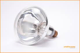 light bulb light bulbs creative zone