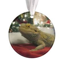 lizard ornaments keepsake ornaments zazzle