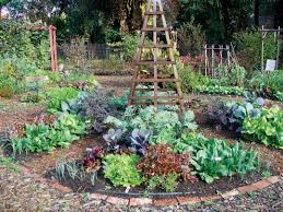 vegetable garden layouts ideas find your happiness through monty