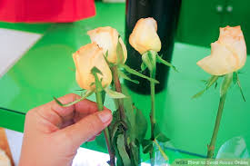 roses online how to send roses online 7 steps with pictures wikihow