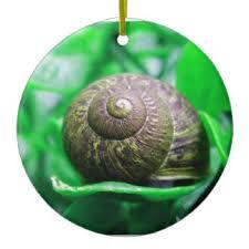 slug ornaments keepsake ornaments zazzle