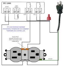 stc 1000 temp controller wiring diagram homebrewing pinterest