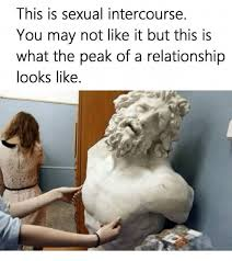 Sexual Relationship Memes - this is sexual intercourse you may not like it but this is what the