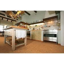 U S Floors by Cork Traditional Plank Roca