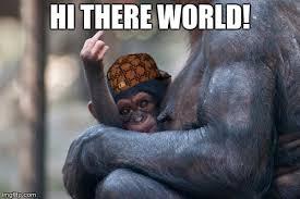 Funny Monkey Meme - monkey imgflip