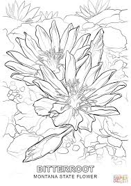 page 50 u203a u203a best 2018 coloring pages and home designs ideas t8ls com