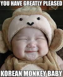 korean monkey baby image macros