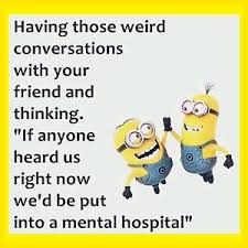 Meme Magnets - 4 x4 flexible fridge magnet minion meme silly funny humor mental