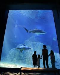 family friendly summer vacations best places to visit