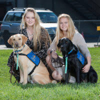 Dogs Helping Blind People Faq Dogs4diabetics