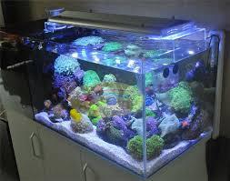 0 9m 36 Cree Led Aquarium Light For Coral Reef 12000k 460nm