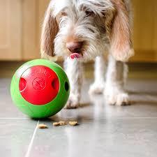 tough dog toys safe for home alone australian dog lover
