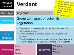 Synonyms Of Opulent Word Of The Week Plantsbrook Learning Trust