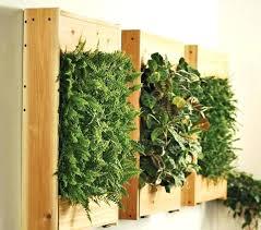 wall mounted indoor herb garden view in gallery vertical succulent