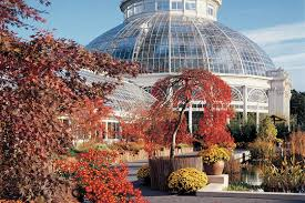 bronx wedding venues fabulous bronx botanical garden wedding new york weddings guide