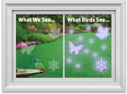 uv light for birds stop birds hitting windowsbird rescue