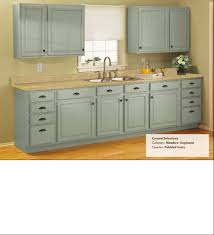Rustoleum For Kitchen Cabinets Rustoleum Cabinet Transformations Meadow This Is Really Pretty