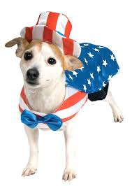 Small Dog Costumes Halloween 118 Dog Halloween Costumes Images Animals Dog
