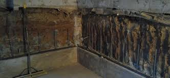 crawl space to basement conversions for your denver home alpine