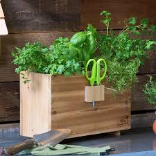 Window Box For Herbs 9 Gifts For The First Time Gardener