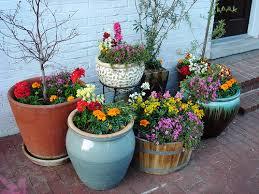 gardening containers gardening ideas