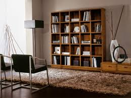 Bookshelves Furniture by Appealing Living Room Bookcases Ideas U2013 Storage Cabinets With