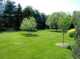 garden design garden design with superior lawn and landscaping