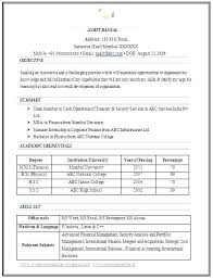 curriculum vitae layout 2013 nba professional resume template download job new sles smith