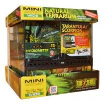 reptile terrariums glass reptile homes swell reptiles
