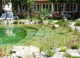 Pond In Backyard by Very Cool Backyard Swimming Pools That Look Like Natural Ponds