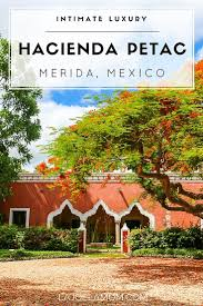 review intimate luxury at hacienda petac mexico la jolla mom