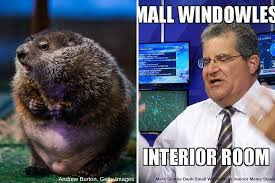 kltv s mark scirto vs the groundhog