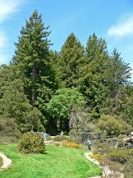 Tilden Park Map Regional Parks Botanic Garden Wikipedia