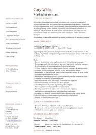 resume template for assistant marketing assistant cv sle