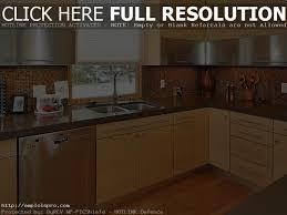 home kitchen design 20 professional home kitchen designs home