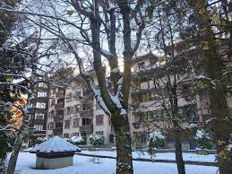 chambre 9 chamonix appartement jonquilles 9 appartement chamonix mont blanc