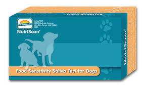 veterinary highlights nutriscan dog food sensitivity kit dawg
