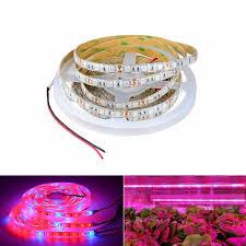 12v dc led grow lights 5m smd 5050 dc 12v led strip light full spectrum led grow light led