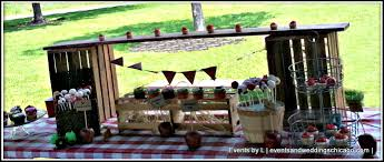 themed l s 2nd farm themed birthday party events by l
